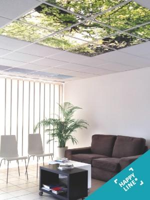 Solutions d'aménagement décoratifs et lumineux - Nos dalles et murs personnalisables HAPPYLINE